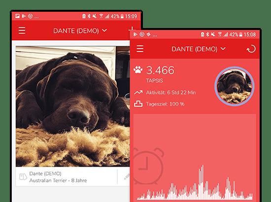Beispiel Hundeprofil Bilder und Aktivität Screens der umgesetzten Furryfit App für MyWOOFI