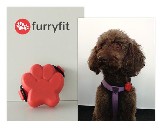 Furryfit