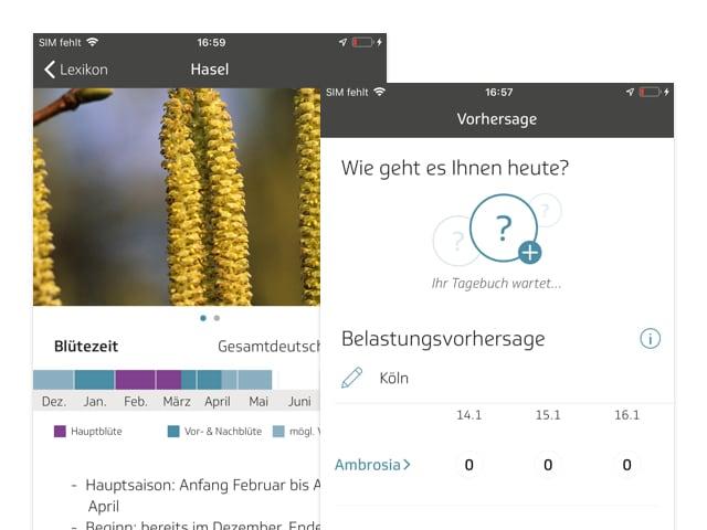 Hasel und Vorhersage Screens der umgesetzten TK Allergie-App Husteblume