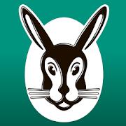 Vailant App Icon